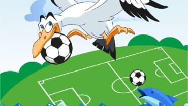 Турнир «Мячи прилетели» г. Анапа
